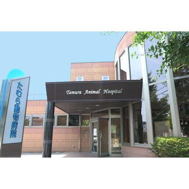 たむら動物病院