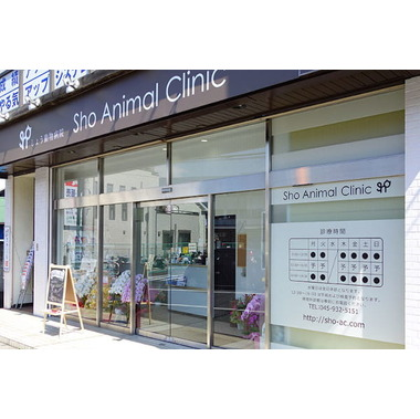 Sho Animal Clinic