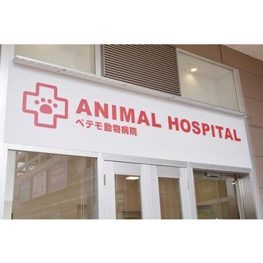 イオン動物病院 柏
