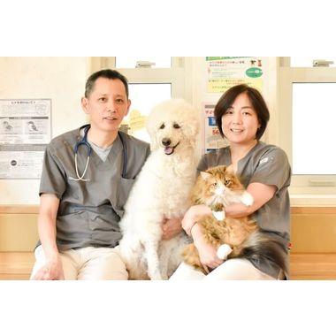 さくら動物病院