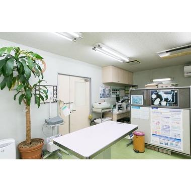 ますもと動物病院
