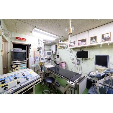 石崎動物病院