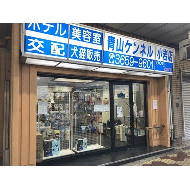 青山ケンネル 小岩店