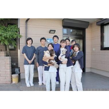 上田動物病院