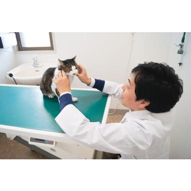 立花動物病院
