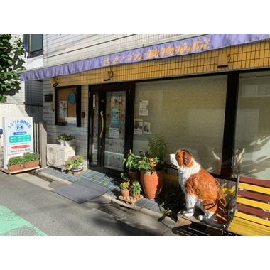 笹塚動物病院