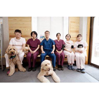 水戸動物病院