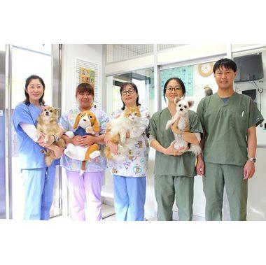 アメリカン動物病院