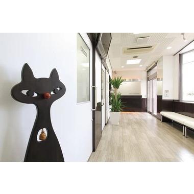 渋谷動物病院