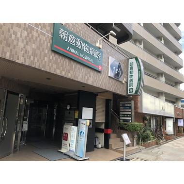 朝倉動物病院