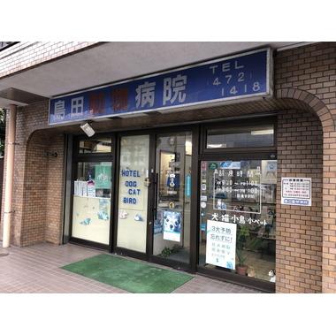 島田動物病院