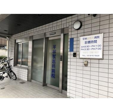 平林獣医科病院
