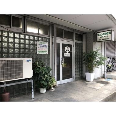 青山小動物医院