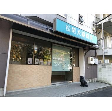 松尾犬猫病院