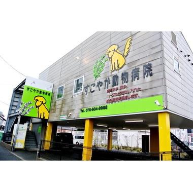 すこやか動物病院 大久保駅北口病院