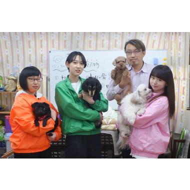 犬の幼稚園 わんこラボ