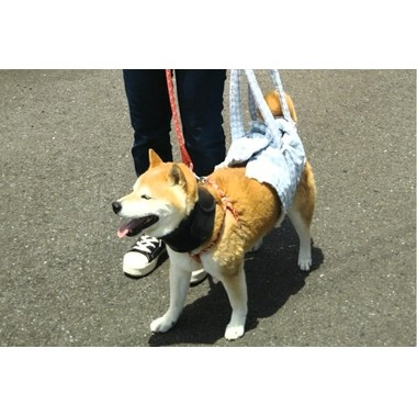 CARE PETS 鎌倉店