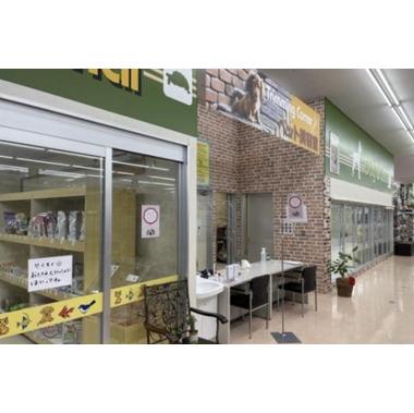 ペットショップチロル 富士宮店
