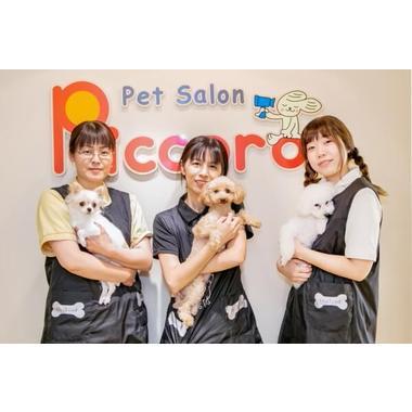 ペットサロン ピッコロ 伊丹店