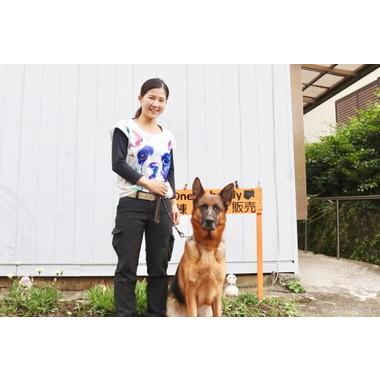 One's buddy~犬のお家~