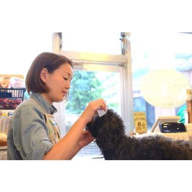 犬の気持ち 大泉店