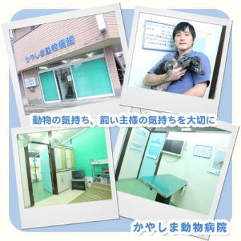 かやしま動物病院
