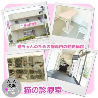 猫の診療室