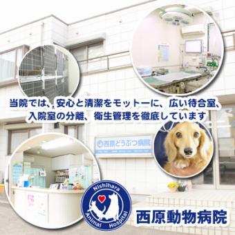 西原動物病院