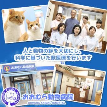 おおむら動物病院