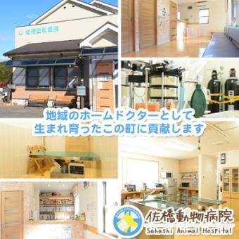 佐橋動物病院