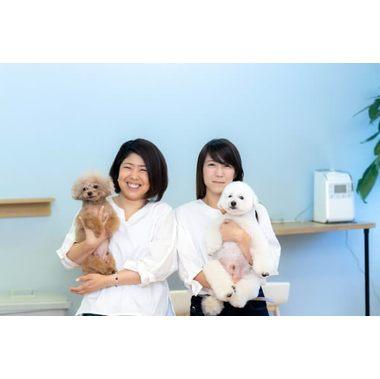 DOG SALON CHI-MEY(ちーみー)