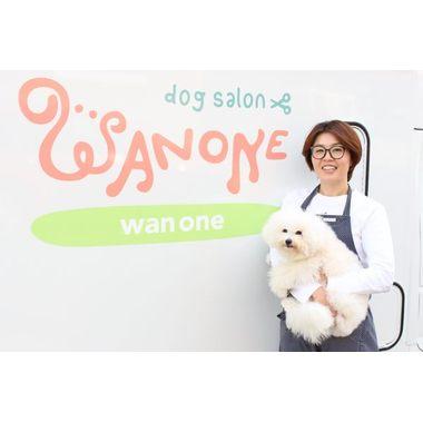 wan one