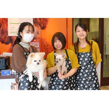 HAPPY BELL 新鎌ヶ谷店