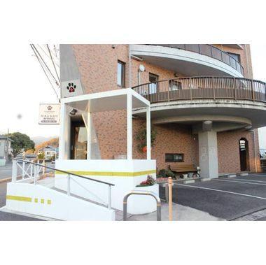 厚木ひまわり動物病院(トリミング)