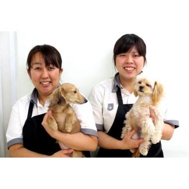 空港ドッグセンター 寝屋川店
