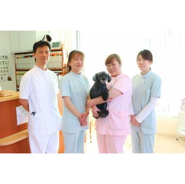 ペタ動物病院