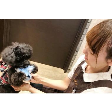 PET-SPA 小手指店(ホテル)