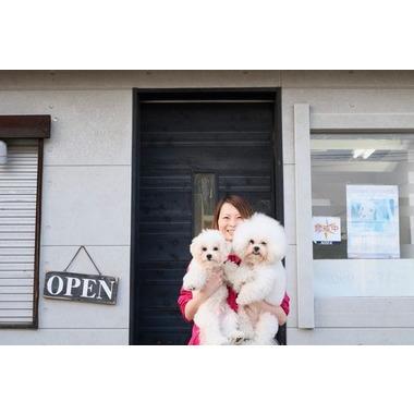Dog salon chel*sea(ホテル)