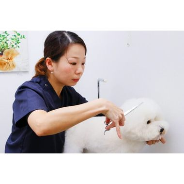 Trimming Salon  Wellness(ペットの予防クリニック)