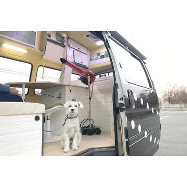 Dog healing Doux