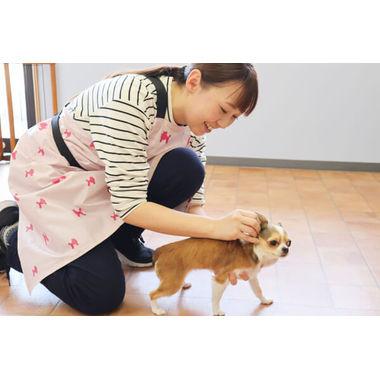Dog care salon リアン