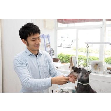Dog salon Pour Toi