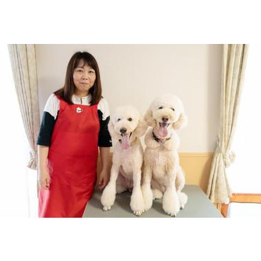 Dog's アンジュ