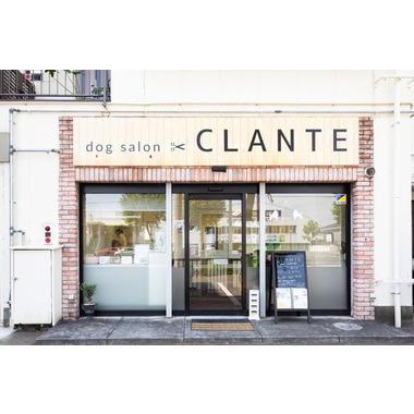 dog salon CLANTE(ホテル)