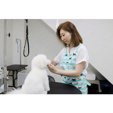 Dog Salon Perle