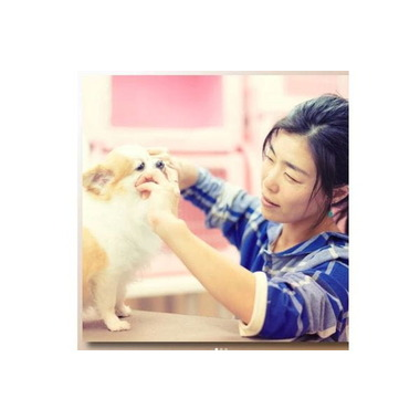 pet salon AROHA DOG