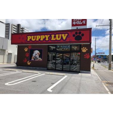 Pet Shop Puppy Luv