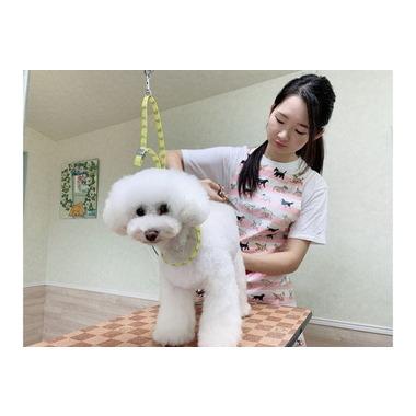犬猫美容室 Fuwari