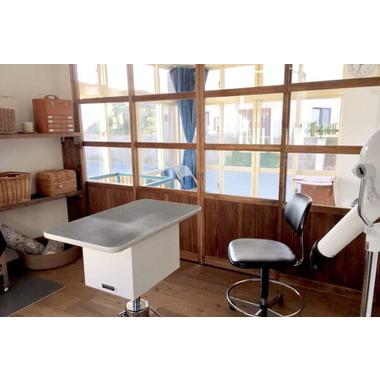 Raft dog grooming salon