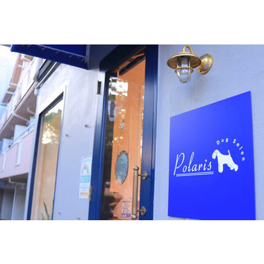 Dog Salon Polaris